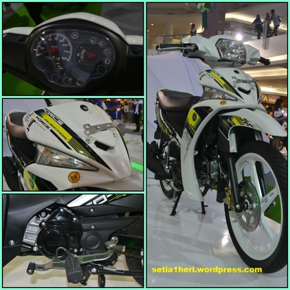 Yamaha Force 2013