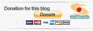 tombol donasi paypal di wordpress