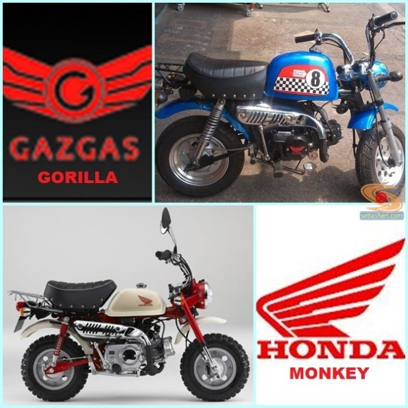 honda monkey dan gazgas gorilla