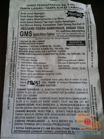hati - hati brosur pengeleman teh kotak rosela PT Hadena Indonesia