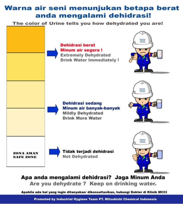 poster-ih-dehidrasi_850x945